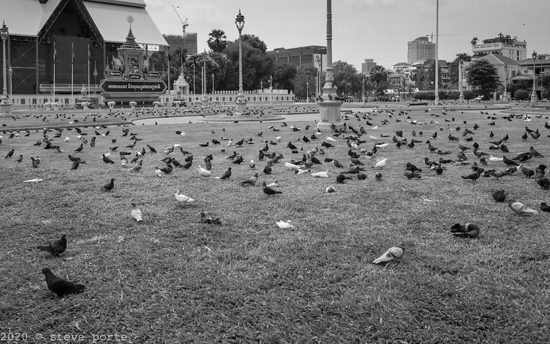 LITTO Corona_Phnom Penh_Cambodia_20_March_2020_0108