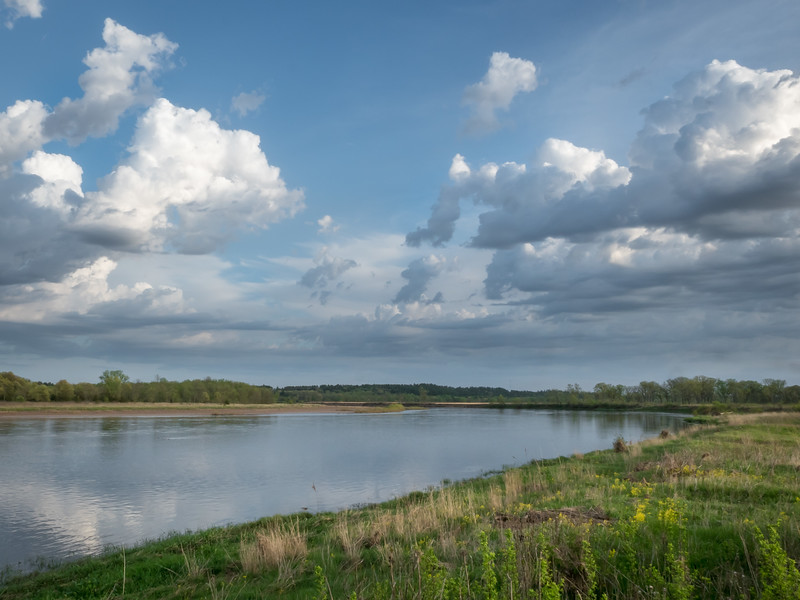 Chippewa River At Upper Dunnville Bottoms
