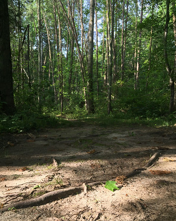#hikingtrail