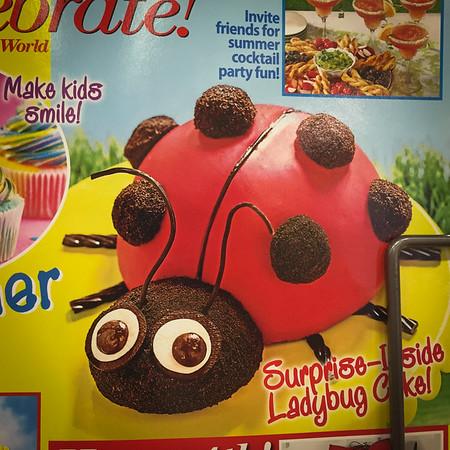 {Ladybug} Cake