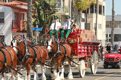 Clydesdales in Belmont Shore