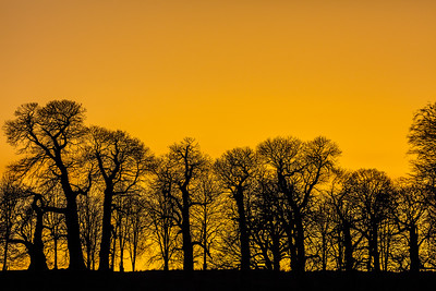 Sunset - South Downs