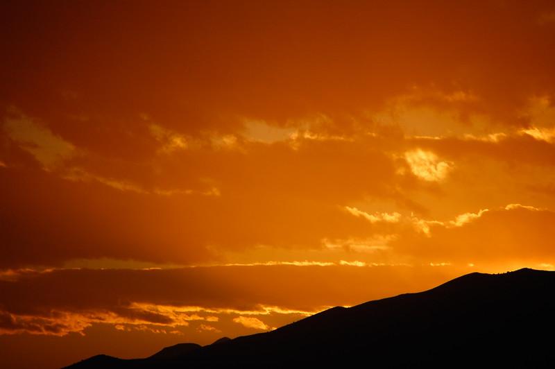 Sunlit Fire