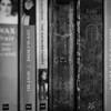 145 (365) Bookshelf