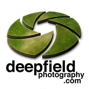 DL_RecordStore