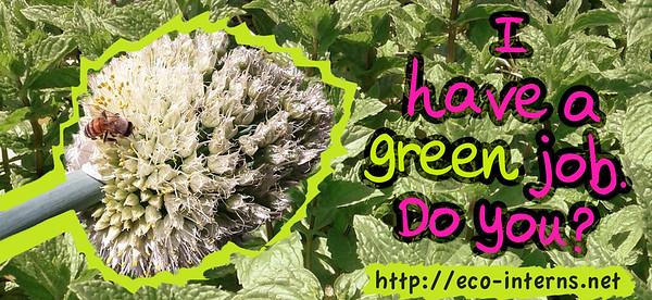 2012, Green Job