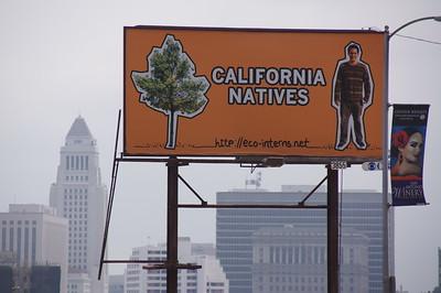 2012, California Natives
