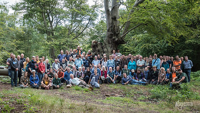 Ancient Tree Forum Summer Conference 2017 Group Photo at Epping Forest (c) M Sidebottom