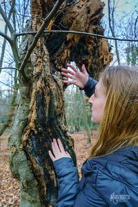 12 Mycologist (c) Marion Sidebottom