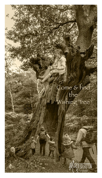 Come & find the wishing tree Marion Sidebottom, 2018, Giclee Fine Art print, 36.96 x 20.8 inches