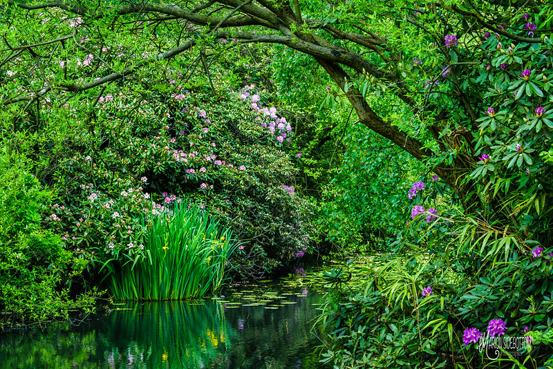 B24 Knighton Lake