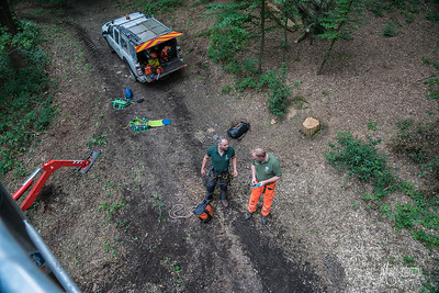 09 Conservation Arborists Pole Hill (c) Marion Sidebottom