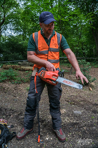 06 Conservation Arborists Pole Hill (c) Marion Sidebottom