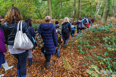 12 FSC Family Walk (c) Marion Sidebottom