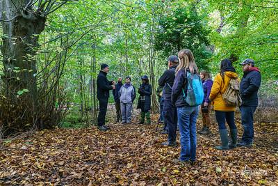 01 FSC Woodland Ecology (c) Marion Sidebottom