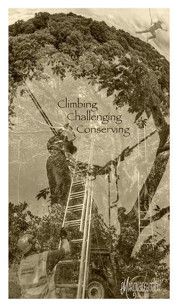 Climbing, Challenging, Conserving,  Marion Sidebottom, 2018, Giclee Fine Art print, 36.96 x 20.8 inches