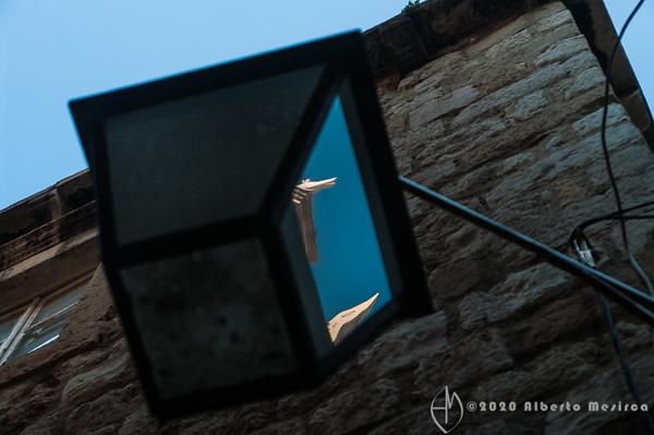 lantern reflection #3