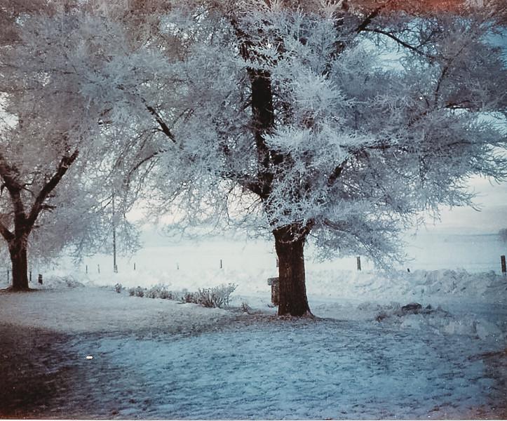 """""""Winter in Idaho"""" December 1967"""