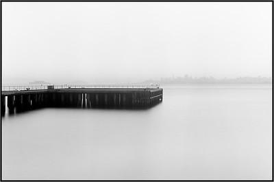 SF Fog, 4X5, 2014