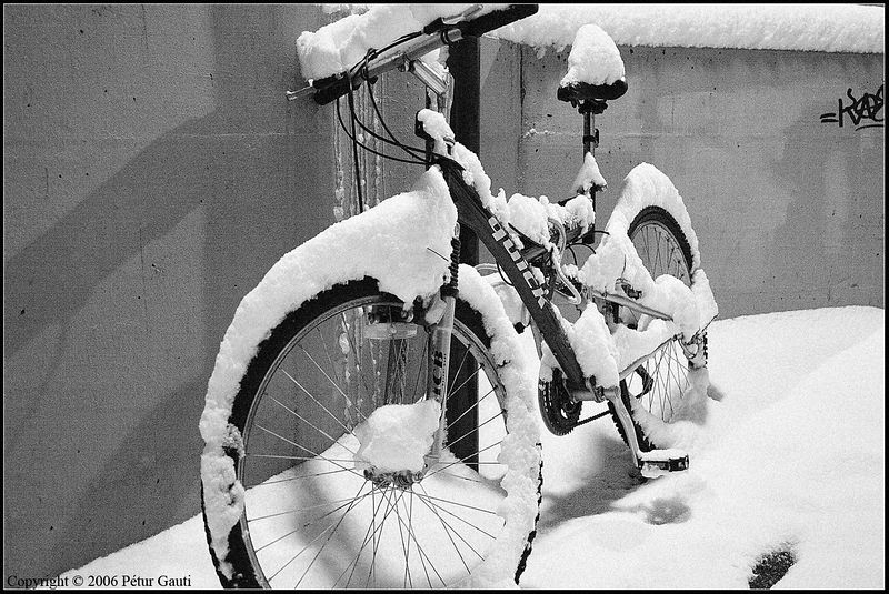 Waiting for its master. Who hopefully remembers to clean the snow of before riding off :)