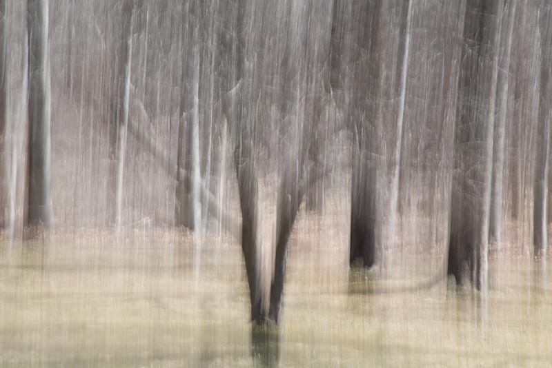 Winter impressionist Landscape