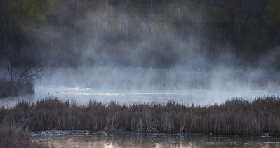 Mist in the morning over the wetlands.