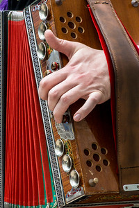 Talanted Accordion Hands