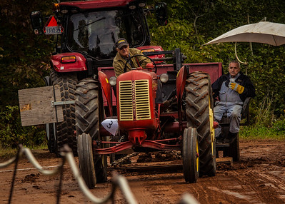 Tractor day at the farm