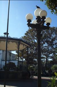 LaPlaza005-BirdAndCenterStage-2006-09-27.jpg