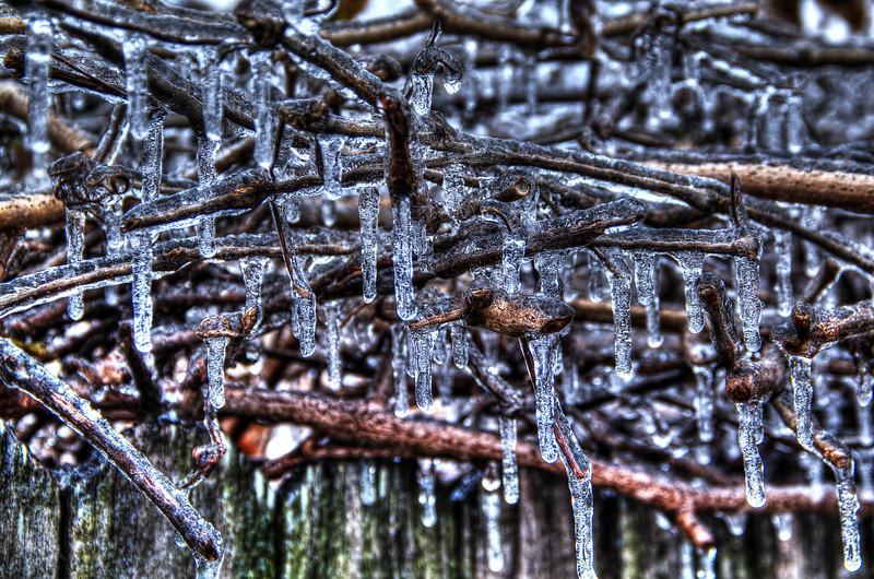 Winter ice, Garland, TX (Dec 2013, HDR)