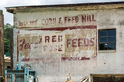 Red Feeds Ghost - Dillard, GA
