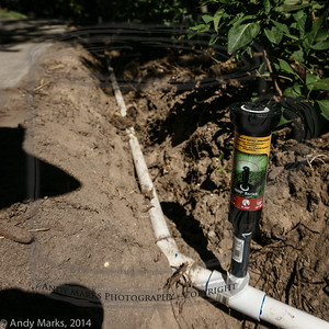 """Step 2: Extend the deeper trench, and add two 4"""" pop-up 360 degree adjustable heads."""