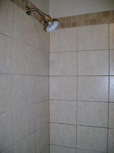Guest bathroom -  shower.