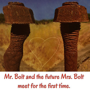Mr & Mrs Bolt 042815-1216-2