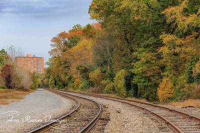 Fall Colors Along the Rails
