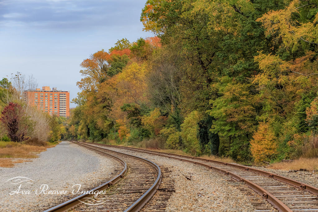 Fall Colors Along the Rails