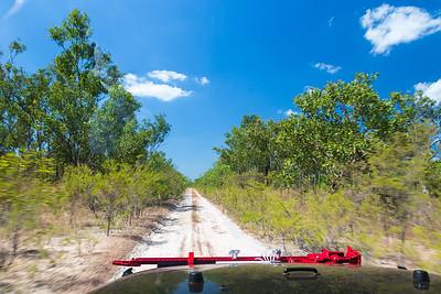 South Alligator Track