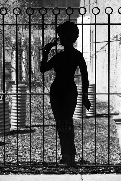 """Then go next door and take a picture through the fence and one of the sexy silhouette."""