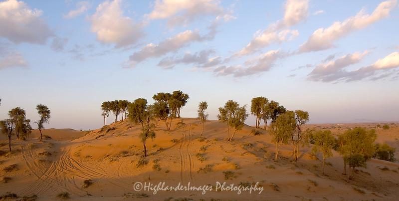Desert, United Arab Emirates