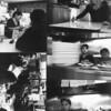 Employees Photo Series