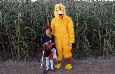 2005, Xin Ling Stein and Chicken
