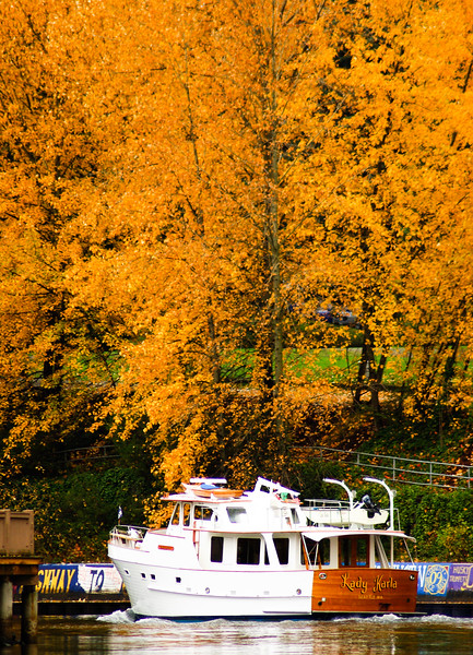 Fall Cruise