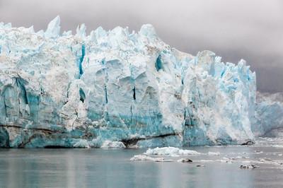 Alaska -23  Lamplugh Glacier 02