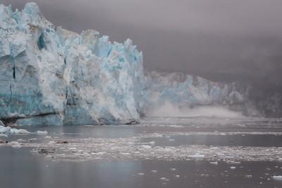 Alaska - 24 Lamplugh Glacier 03