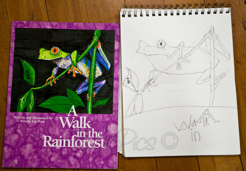 Day 27<br /> Pride<br /> <br /> My daughter, Ellie, is 6.5 years old. She was instructed to draw this frog (her choice) in pencil. When I arrived at her art class, her teacher pulled me aside. She was astounded at how well Ellie could draw! Ellie was doing things that she had never been taught - recognizing negative space, seeing proportions, shapes, etc, etc. But the cutest thing was her absolute pride in how well she did. It was almost as great as mine!<br /> <br /> *I should note that up until she drew this, she had mainly drawn bugs and mermaids - nothing even close to as complicated as this! I can't stress how different this is from anything she's ever drawn.