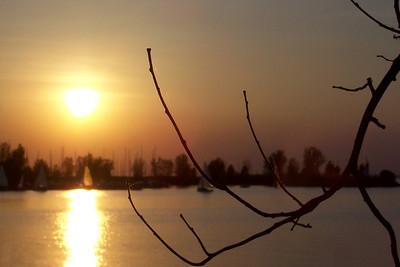 sunset bokeh Andrew Haydon Park, Ottawa