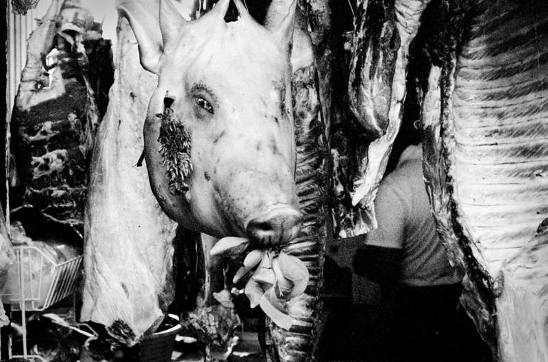 Cabeza de cerdo. Oaxaca, Mexico. 2002.