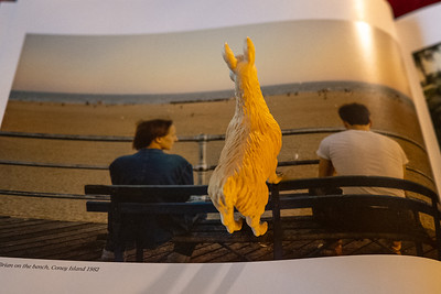 llama of the night gazes out to sea alongside Nan Goldin's friends Suzanne and Brian