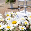 2012-marcia-wedding-20