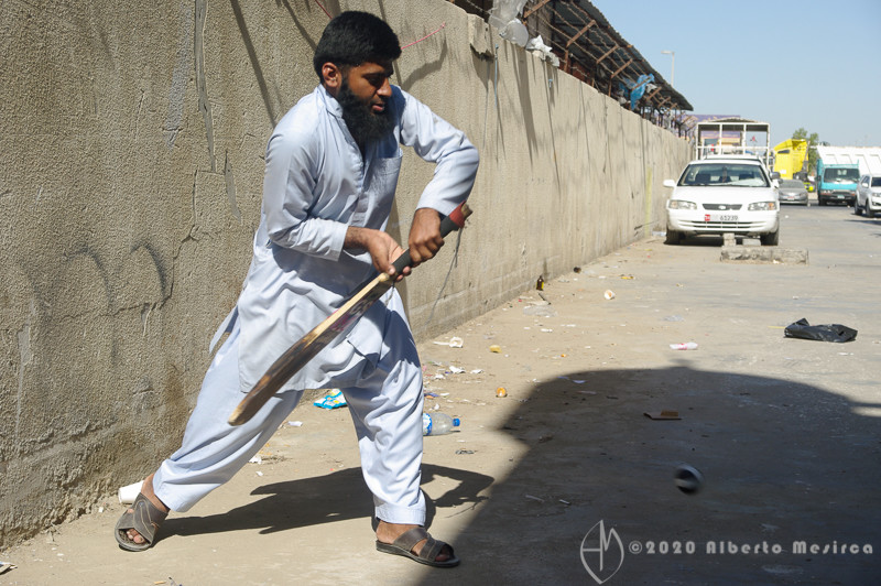 cricket-Mussafah-Abu-Dhabi-UAE_PEN8345.jpg